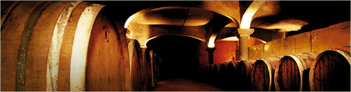The cellar of Domaine de Cantaussel