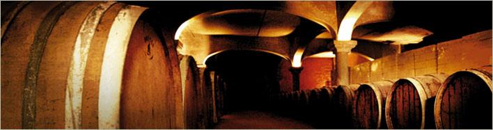 The cellar of Domaine de Cantaussel